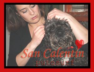 San Calentín
